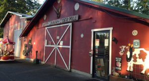 These 7 Charming Cider Mills In Washington Will Have You Longing For Fall