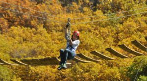 This Zipline Tour In Colorado Is The Perfect Way To See The Fall Colors Like Never Before
