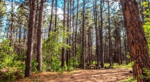 The Secluded Campground In Nebraska That Will Take You A Million Miles Away From It All