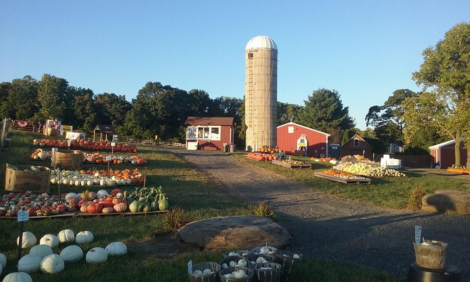 11 Best Harvest Festivals in Pennsylvania 2017