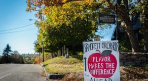 You'll Want To Add The Oldest Apple Orchard In Maine To Your Fall Bucket List