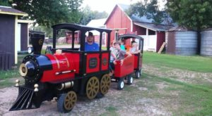 The Orchard Train Ride In Minnesota That's Perfect For A Fall Day