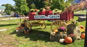 14 Fall Festivals In Vermont You Don't Want To Miss This Year