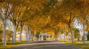 The Nevada Park That Will Make You Feel Like You Walked Into A Fairy Tale