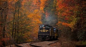 The 7 Best Train Themed Adventures You Can Take In West Virginia