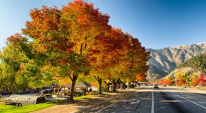 Here Are The Best Times And Places To View Fall Foliage In Washington