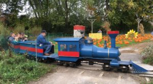The Pumpkin Patch Train Ride In New York That's Perfect For A Fall Day