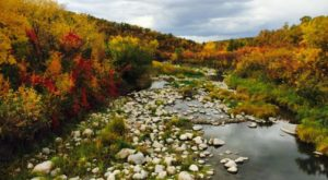 Here Are The Best Times And Places To View Fall Foliage In North Dakota