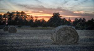 12 Unwritten Rules Every Nebraskan Lives By 'Til Death