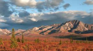 Here Are The Best Times And Places To View Fall Foliage In Alaska