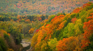 9 Picture Perfect Fall Day Trips To Take In Vermont