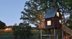 This Little Known Vineyard Near Charlotte Is The Perfect Place To Get Away From It All