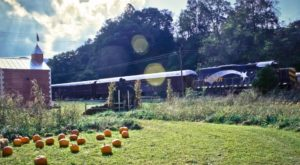 The Pumpkin Patch Train Ride In North Carolina That's Perfect For A Fall Day
