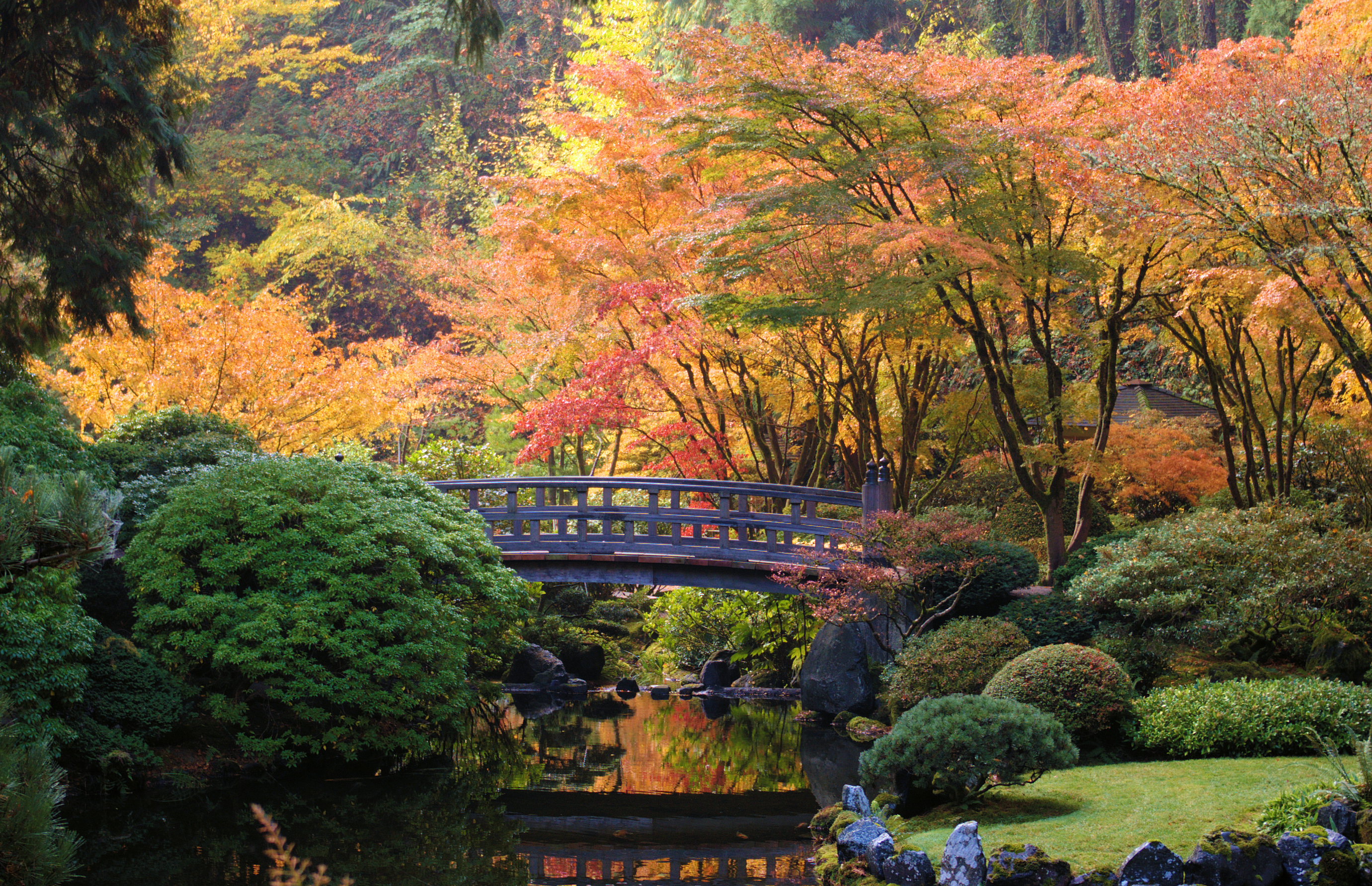 Japanese Garden Wallpapers: 8 Best Fall Day Trips Around Portland
