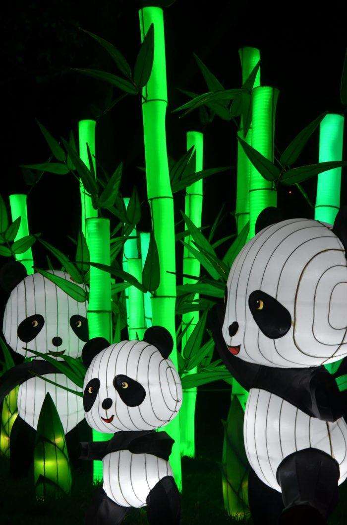 Chinese Lantern Festival Daniel Stowe Botanical Gardens