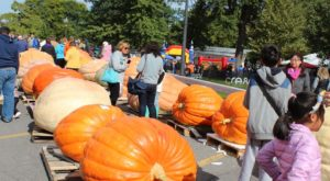 13 Harvest Festivals In New York That Will Make Your Autumn Awesome