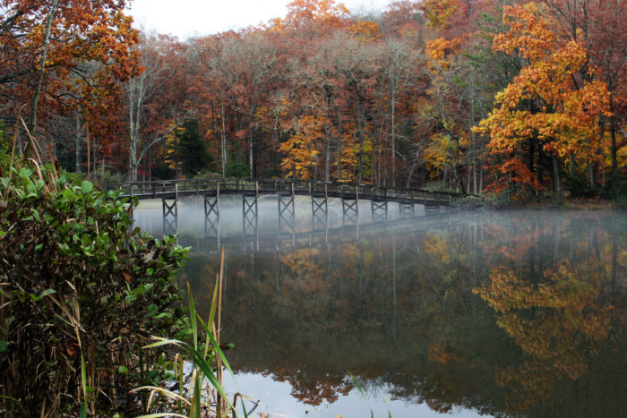 Hungry mother state park is the best place to hike in virginia in if youre up for a real adventure you can embark on the lake trail loop a 55 mile circuit that follows the perimeter of the lake ccuart Image collections