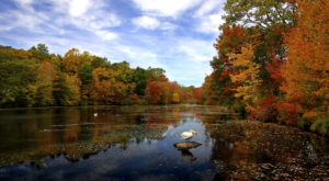 Here Are The Best Times And Places To View Fall Foliage In Connecticut