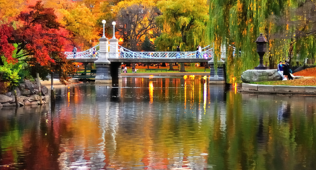 When And Where To View Fall Foliage 2017 In Boston
