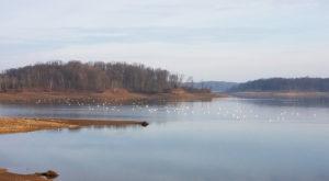 7 Gorgeous Lakes To Visit Around Indianapolis