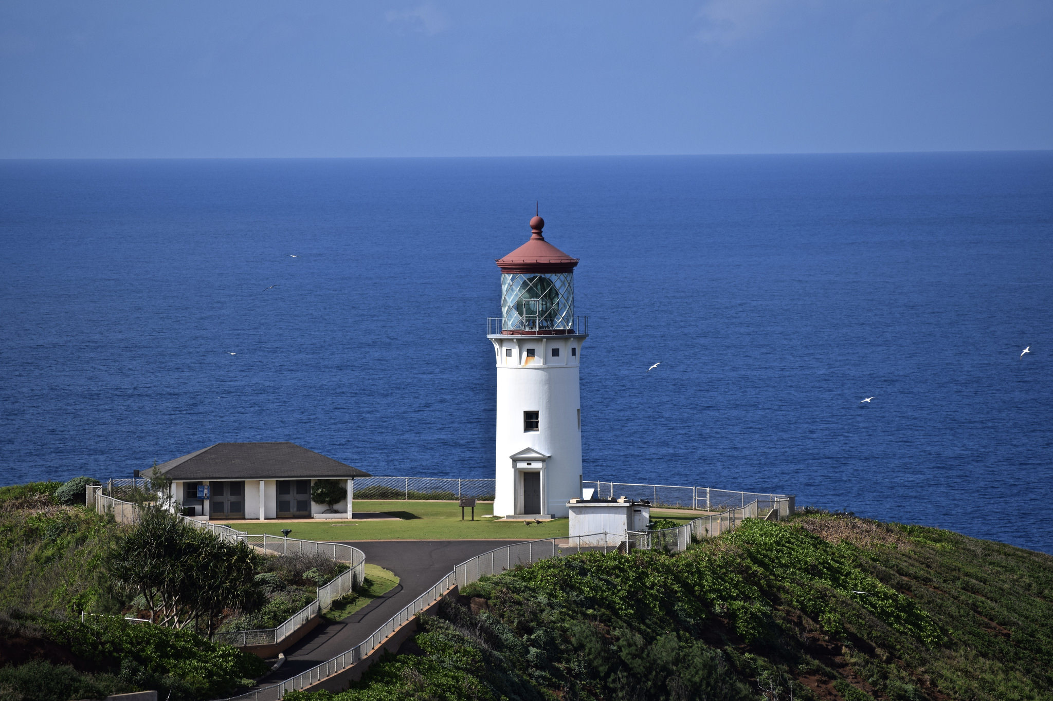 Hawaii S Kilauea Lighthouse Is Located In The Most Magical
