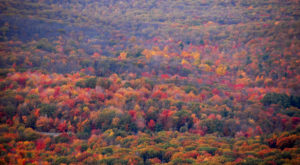 Here Are The Best Times And Places To View Fall Foliage In Pennsylvania