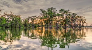 This Just Might Be The Most Naturally Beautiful Spot In All Of Louisiana