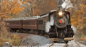 The Pumpkin Patch Train Ride Near Pittsburgh That Will Make Your Autumn Perfect
