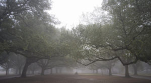 The Sinister Story Behind This Popular New Orleans Park Will Give You Chills