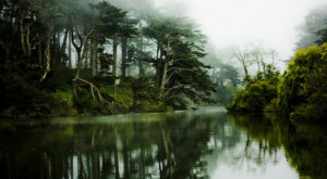 The Sinister Stories Behind This Popular San Francisco Park Will Give You Chills