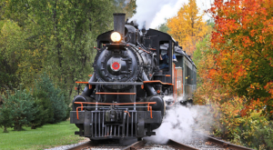 Take This Fall Foliage Train Ride Near Buffalo For A One-Of-A-Kind Experience