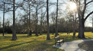 The 8 Secret Parks Of Louisiana You've Never Heard Of But Need To Visit