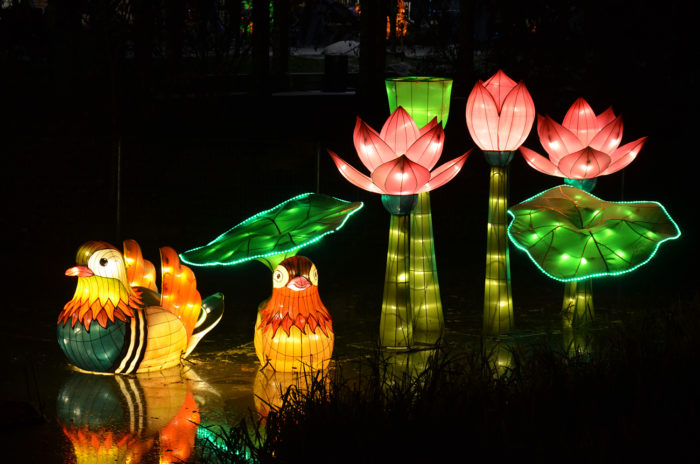 the chinese lantern festival is the best festival in charlotte. Black Bedroom Furniture Sets. Home Design Ideas