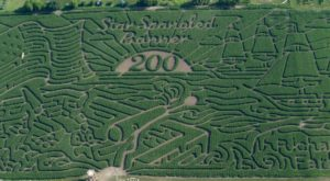 The Largest Corn Maze In The World Is Hiding On This Illinois Farm And You Have To Visit