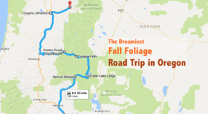 This Dreamy Road Trip Will Take You To The Best Fall Foliage In All Of Oregon