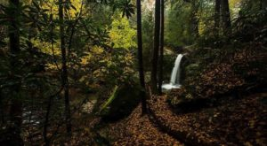 The Trail Leading To This Enchanting Waterfall Is The Perfect Kentucky Hike In The Fall