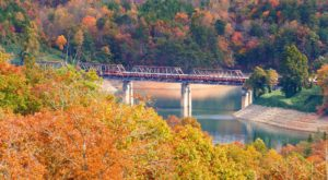 Take This Fall Foliage Train Ride Near Charlotte For A One-Of-A-Kind Experience