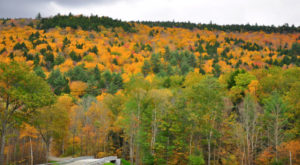 Here Are The Best Times And Places To View Fall Foliage In Massachusetts