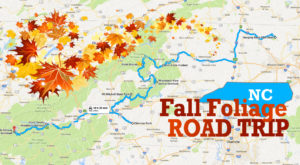 This Dreamy Road Trip Will Take You To The Best Fall Foliage In All Of North Carolina