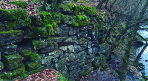 Most People Have No Idea These 2,000 Year Old Ruins Are Hiding In Nashville