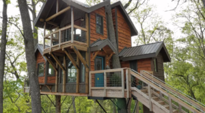 You'll Never Forget A Night At This Enchanting Treehouse In North Carolina