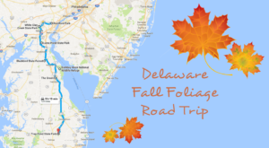 This Dreamy Road Trip Will Take You To The Best Fall Foliage In All Of Delaware