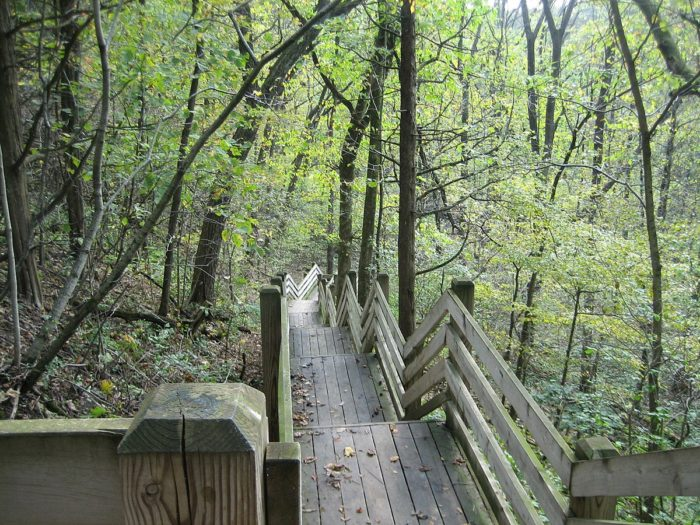 White Pines Forest State Park In Illinois Is A Must Visit
