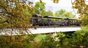 Take This Fall Foliage Train Ride Near Baltimore For A One-Of-A-Kind Experience