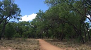 This Truly Amazing Trail Will Show You New Mexico Like Never Before