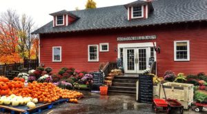 These 8 Charming Apple Orchards Near Boston Are Picture Perfect For A Fall Day