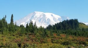 7 Short And Sweet Fall Hikes In Washington With A Spectacular End View