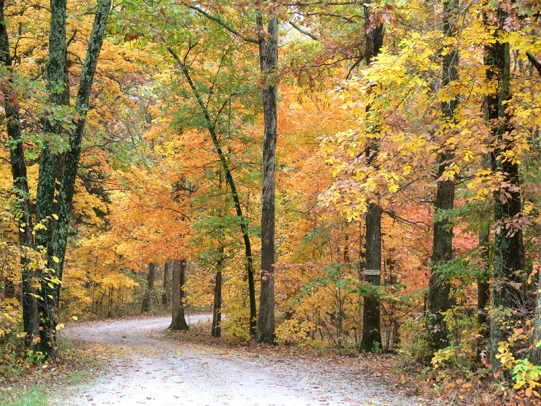Fall colors vacation deals