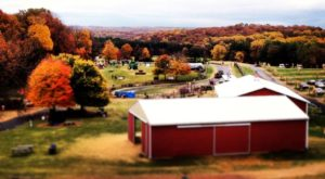 These 13 Charming Apple Orchards In Maryland Are Picture Perfect For A Fall Day