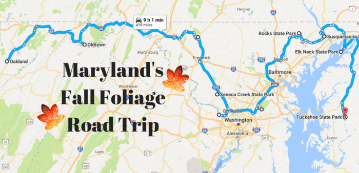 Take This Fall Foliage Road Trip To See The Most Colorful - Road map of maryland